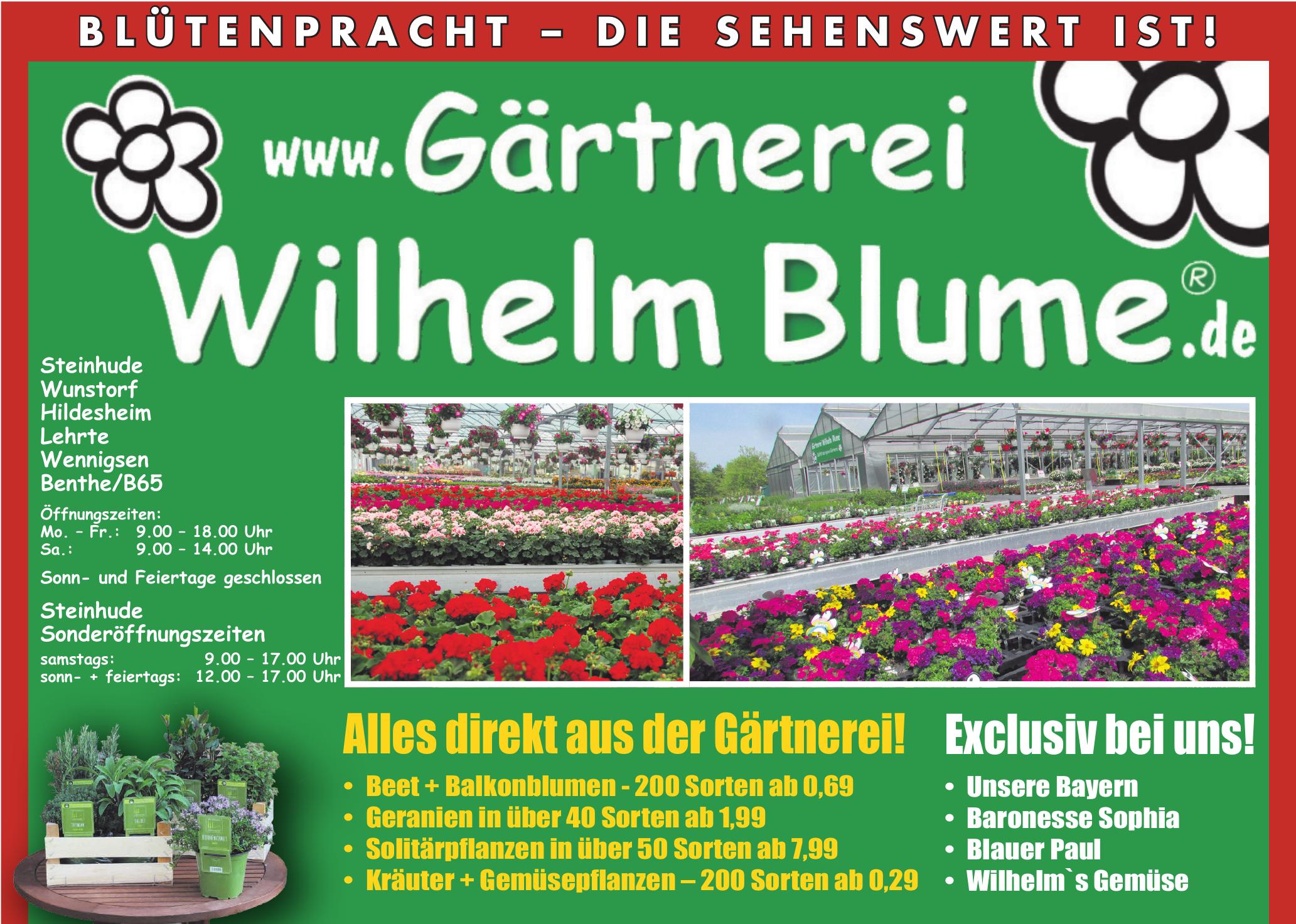 Gärtnerei Wilhelm Blume