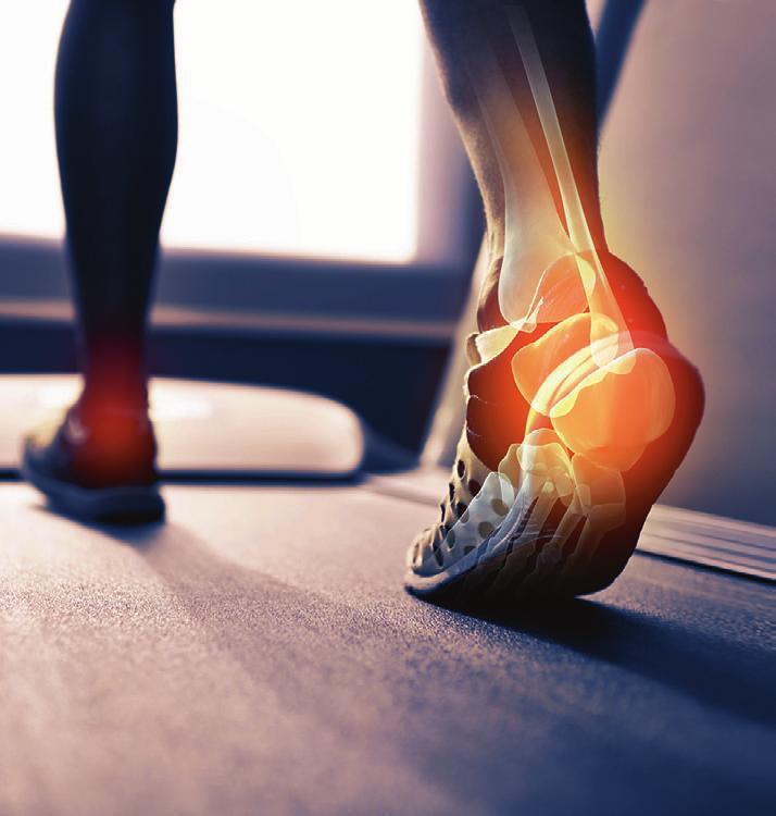 Dosiert Laufen: Das Sprunggelenk ist beim Sport und besonders beim Joggen großen Belastungen ausgesetzt