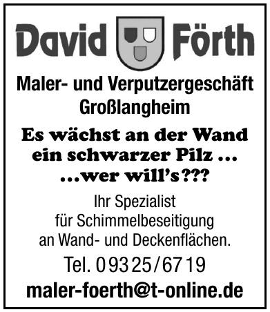 David Förth Maler- und Verputzergeschäft Großlangheim
