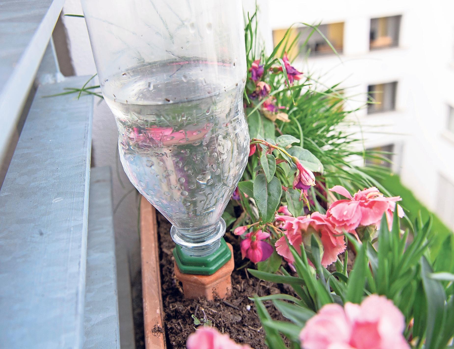 Ton-Kegel zur Bewässerung von Balkonkästen werden am besten schon bei der Bepflanzung in den Topf gesteckt, so dass die Wurzeln sich drumherum bilden können. Fährt man für ein paar Tage weg, kommen dann mit Wasser gefüllte Flaschen auf die Kegel. Foto: Andrea Warnecke/dpa-tmn