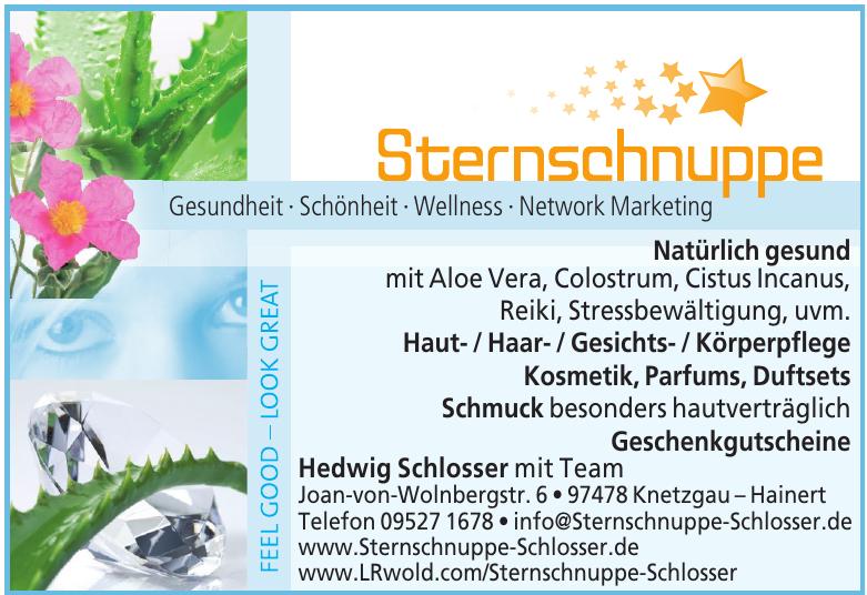Sternschnuppe - Hedwig Schlosser mit Team