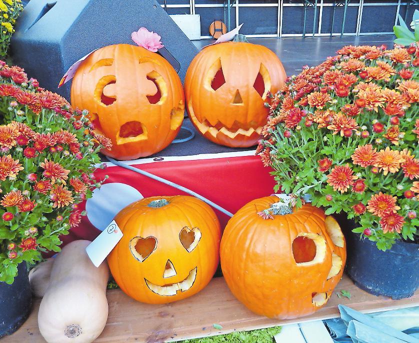 Werden beim Obst- und Gemüsetag ab 16.45 Uhr an der Hauptbühne prämiert: die schönsten Kürbisse. FOTO: SCHIFFERSTADT/FREI