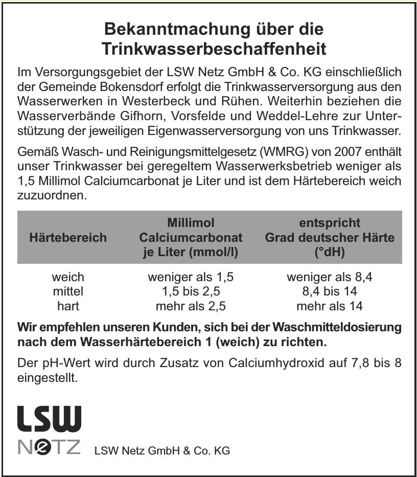 LSW Netz GmbH & Co. KG