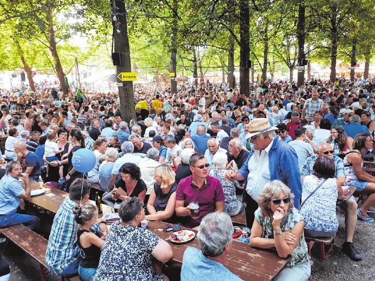 Der idyllische Festplatz unter den Bäumen bietet viele gemütliche Sitzplätze für die Schoppenfreunde.       FOTO: RAINER DEHMER