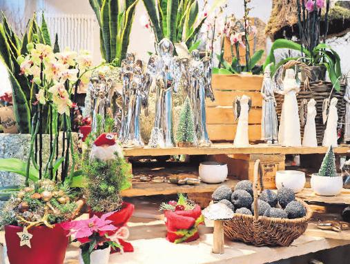 Im Geschäft Die Blume dominieren jetzt Sträuße, Kränze und Gestecke in klassischem Rot, Accessoires für Fensterbank und Tisch dürfen glänzen.