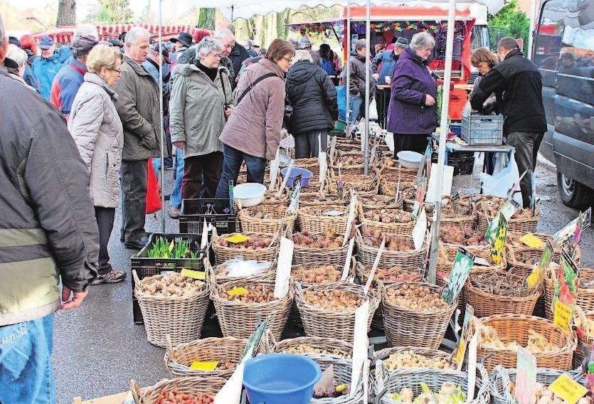 Auch alles rund um die neue Gartensaison gibt es in Römhild auf dem Kalten Markt. Fotos: Lemme