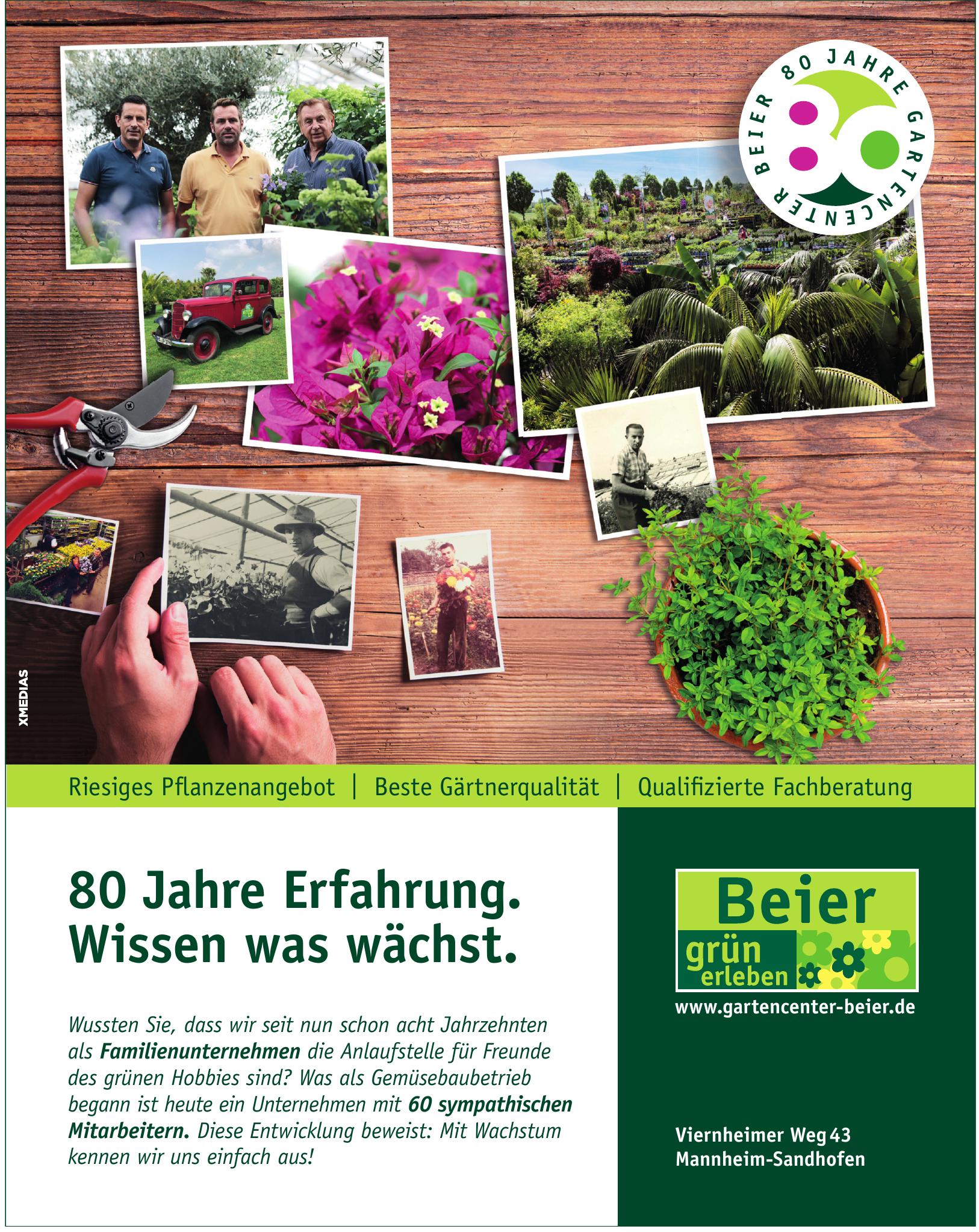 Beier GmbH & Co. KG