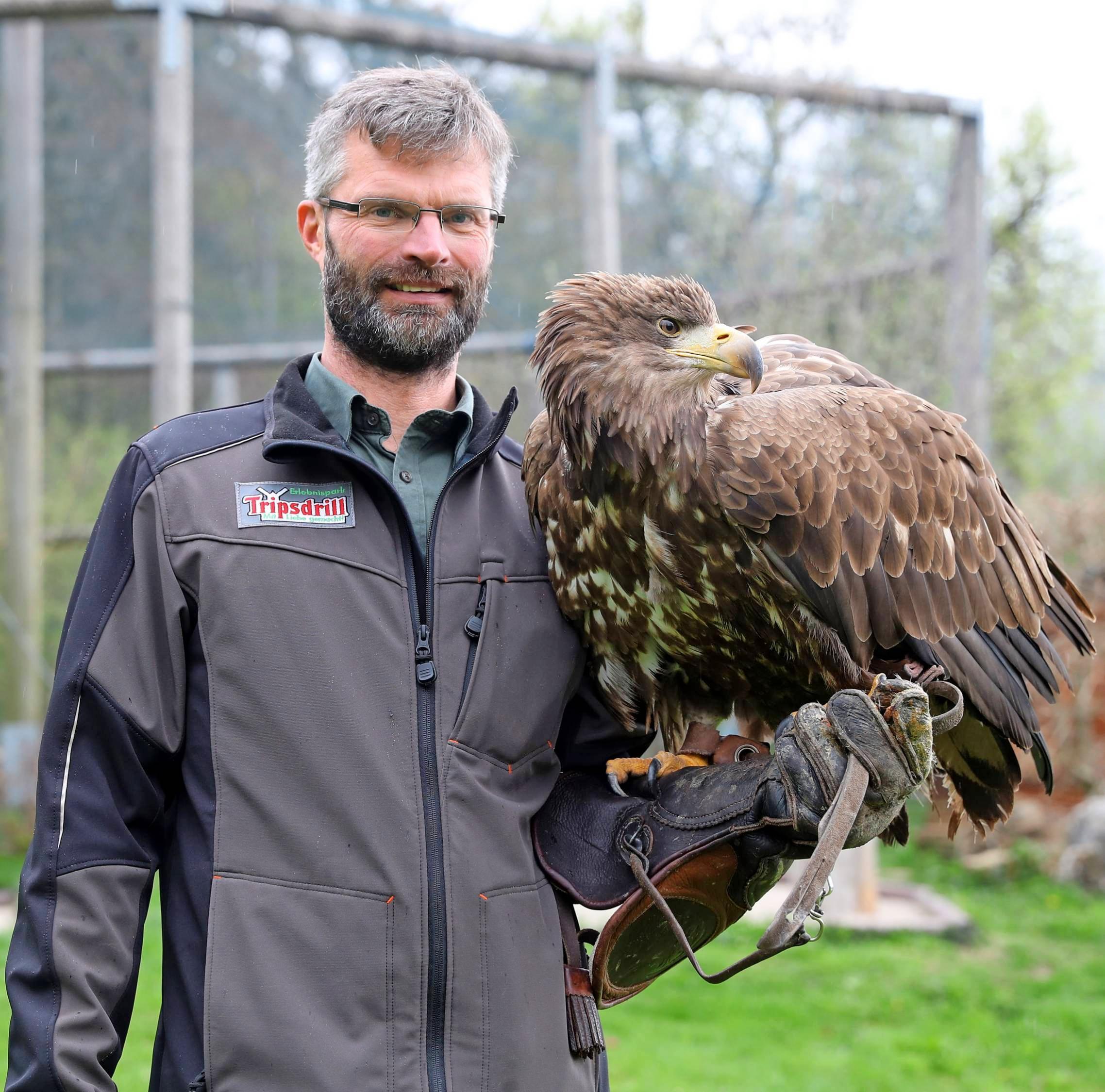 """""""Mit Tieren zu arbeiten ist meine absolute Leidenschaft"""", sagt Falkner Roland Werner. Freya, der europäische Seeadler, ist einer der Greifvögel, die bei den Flugvorführungen in Tripsdrill zu sehen sind."""