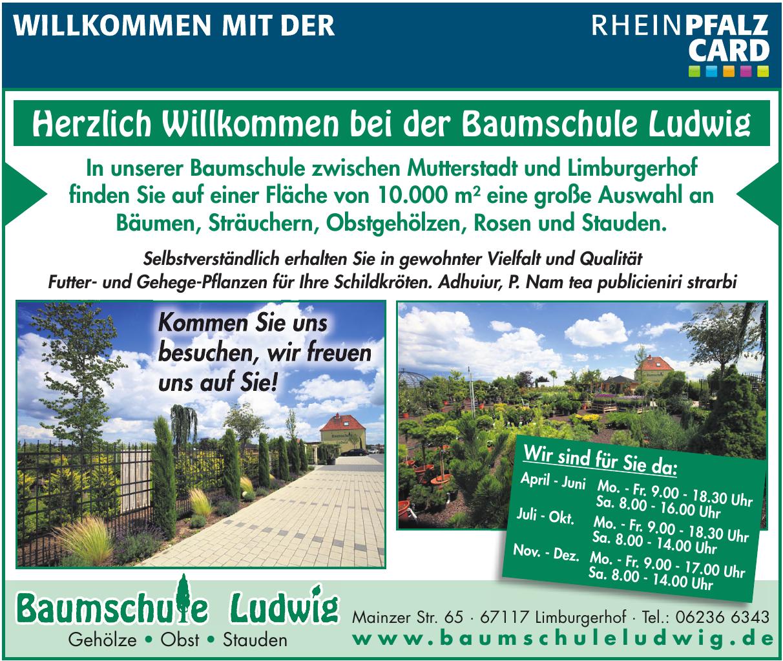 Baumschule Ludwig