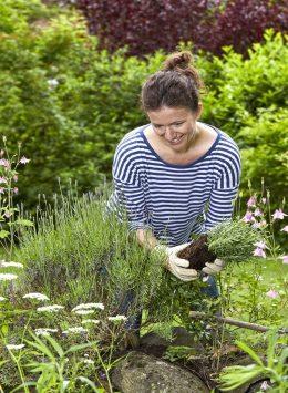 Mit Trockenmauern kann man kleine Gärten reizvoll inszenieren und Lebensraum für Bienen und andere Insektenarten schaffen. Bild: djd/STIHL