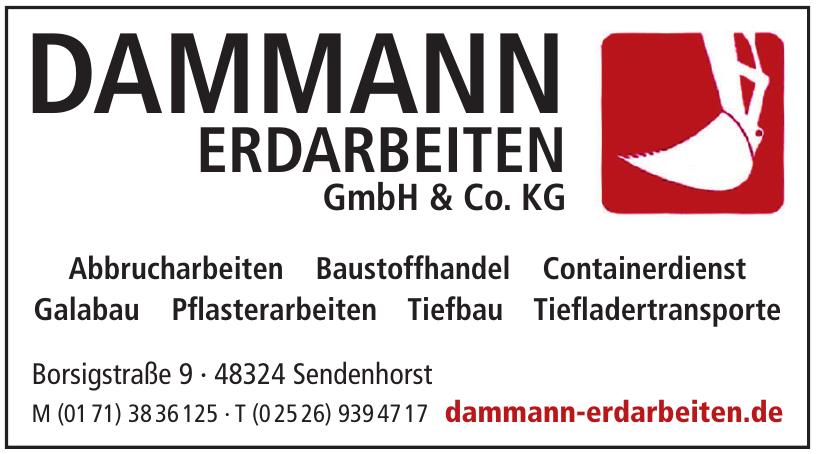 Dammann Erdarbeiten GmbH & Co. KG