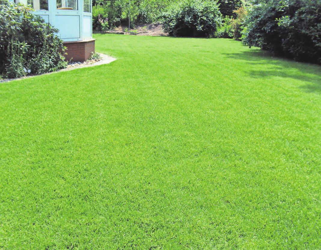 Der Rasen sieht aus wie in seinen besten Tagen. Da freut sich der Gartenfreund – die viele Arbeit hat sich ausgezahlt. Fotos: Eskilden Gärten
