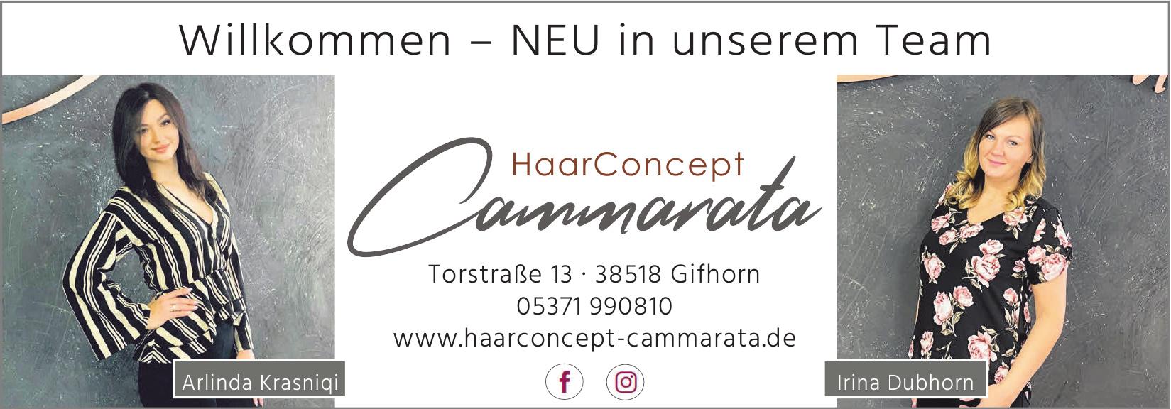 HaarConcept Cammarata