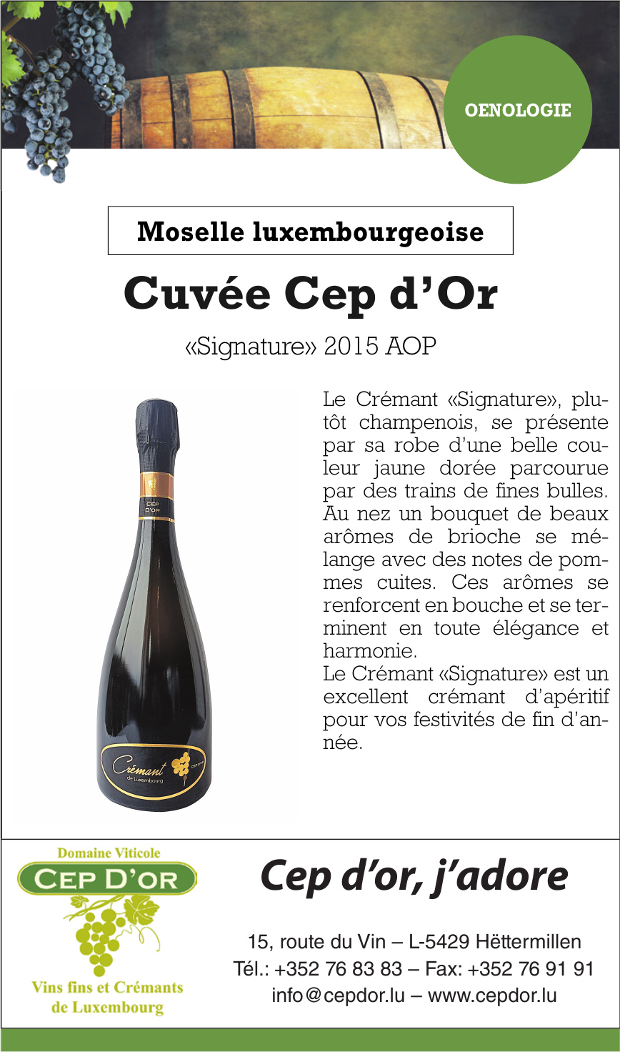 Cep d'or, j´adore