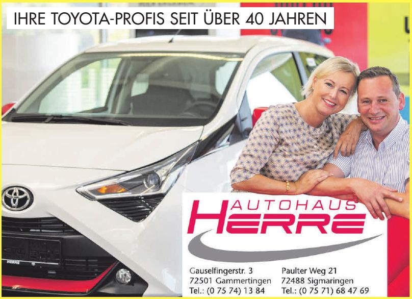 Autohaus Herre