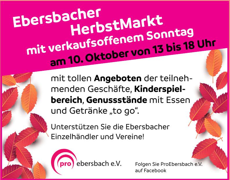 ProEbersbach e.V.