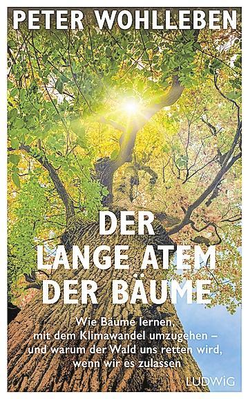 Reiners Bücherkiste Image 3