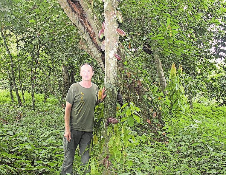 01 - Kakaobäume sind sehr anspruchsvolle Pflanzen. Hier steht Schell vor einem etwa 100 Jahre alten Baum. Fotos: privat, paulmz, Xavier/stock.adobe.com