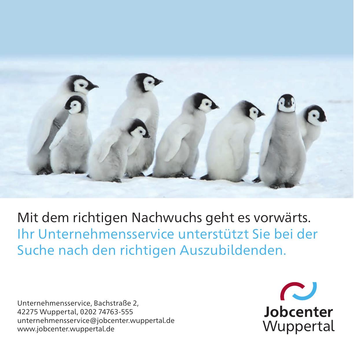 Jobcenter Wuppertal Unternehmensservice