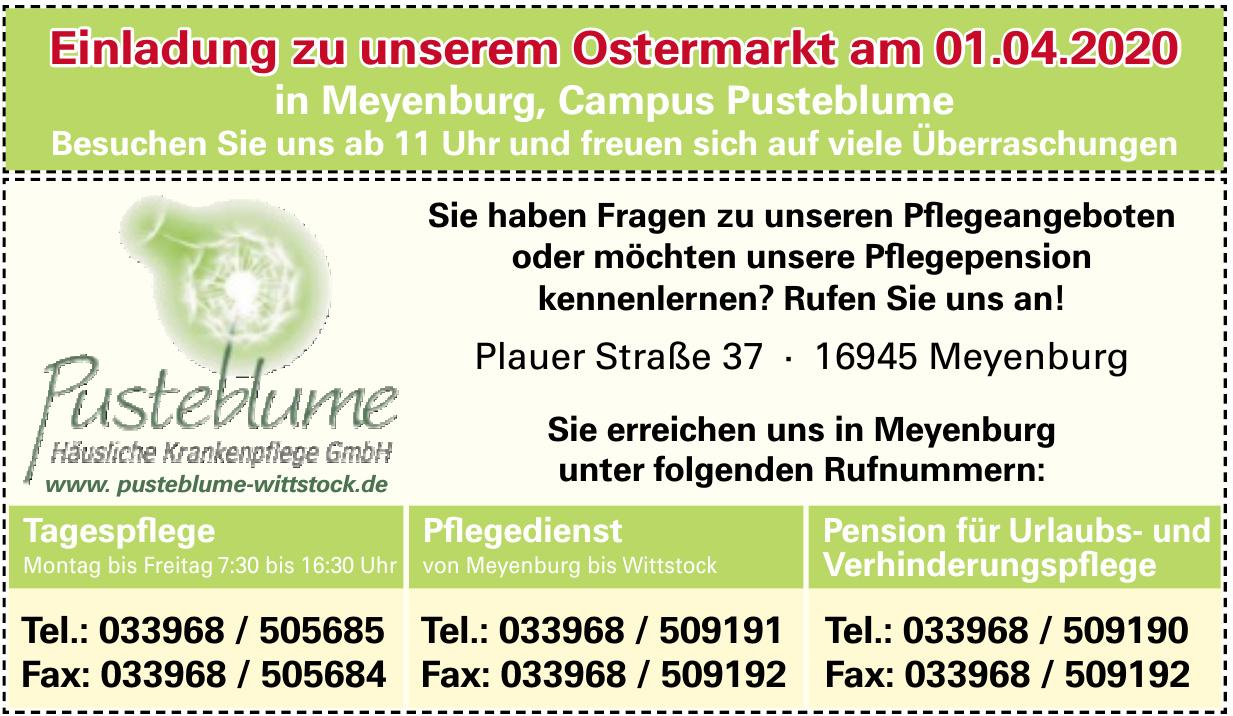 Pusteblume Häusliche Krankenpflege GmbH