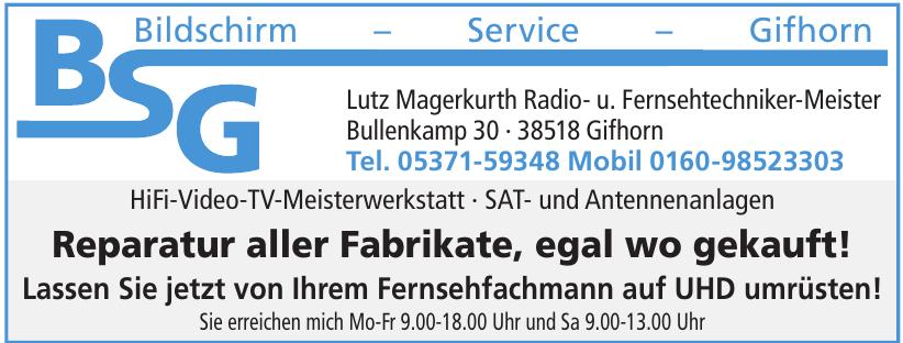 BSG Bildschirm – Service – Gifhorn