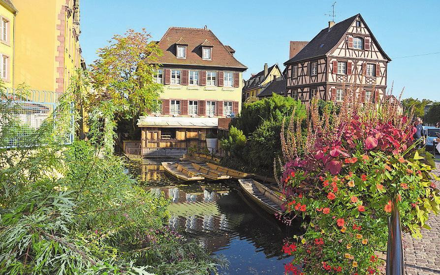 Faszination Südfrankreich Image 3