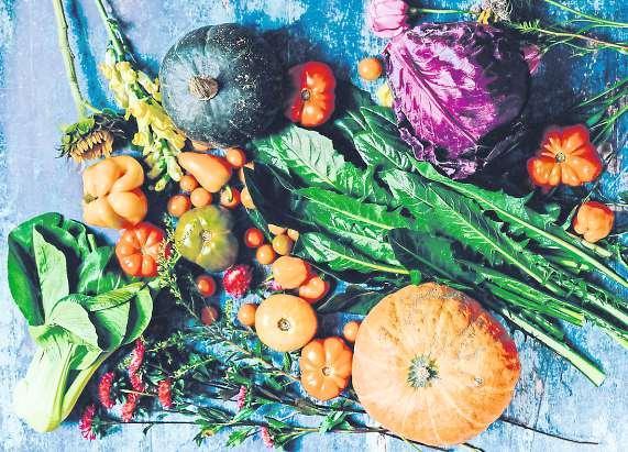Auch im Herbst kann eine große, vielfältige Ernte eingebracht werden. Foto: Pexels