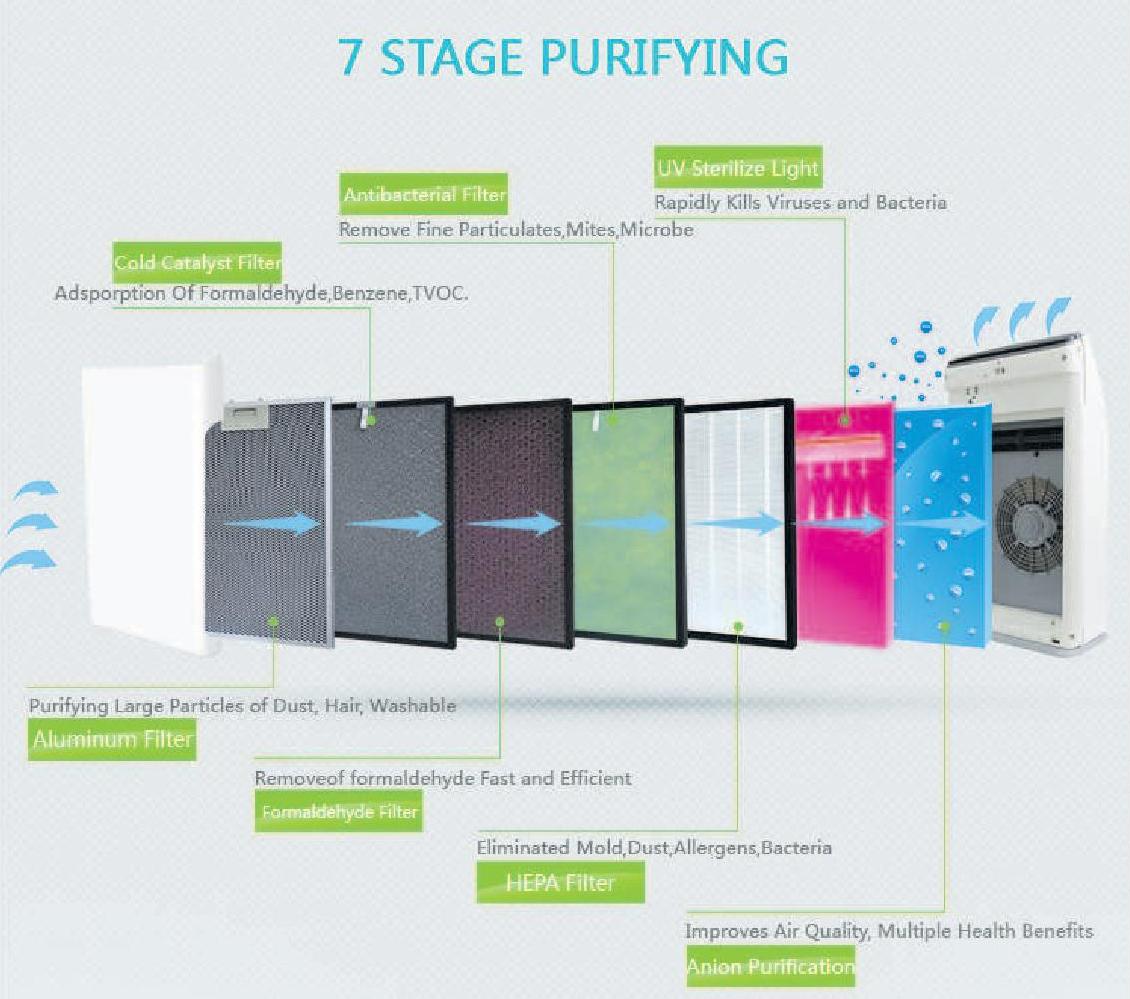 Evolution: détecte les virus ! Image 4