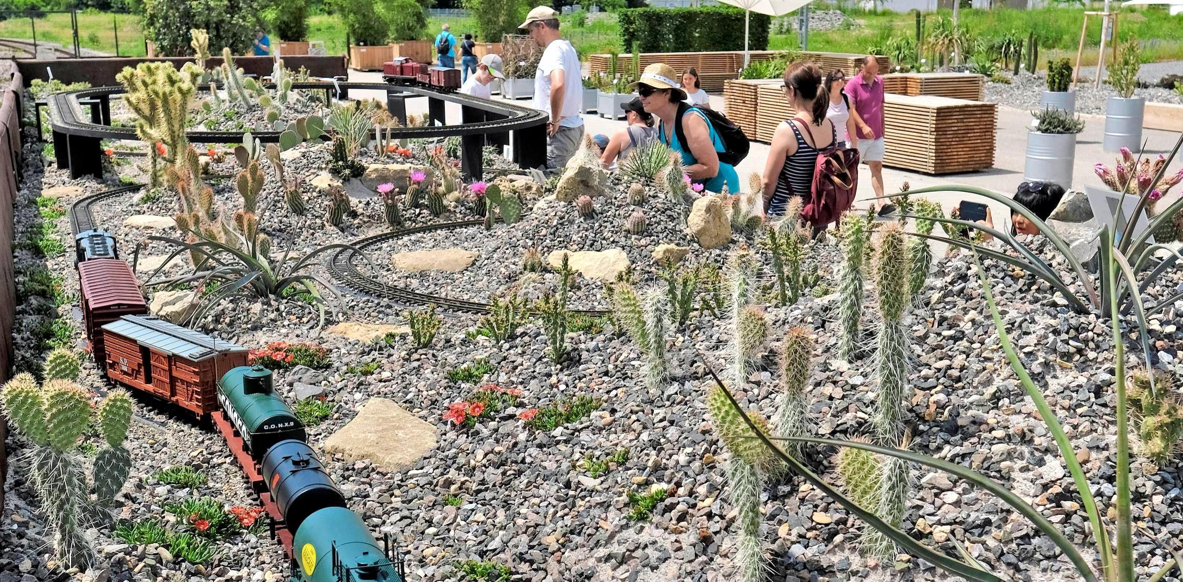 Kakteengarten: Stachelpflanzen und Eisenbahn bildeten eine sehenswerte, gelungene Mischung.