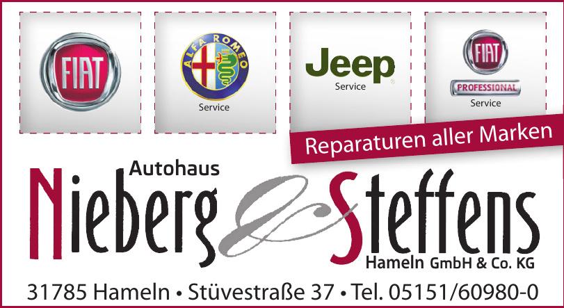Nieberg & Steffens Hameln GmbH