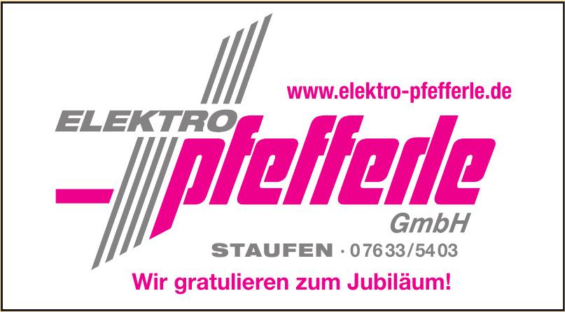 Elektro Pfefferle GmbH
