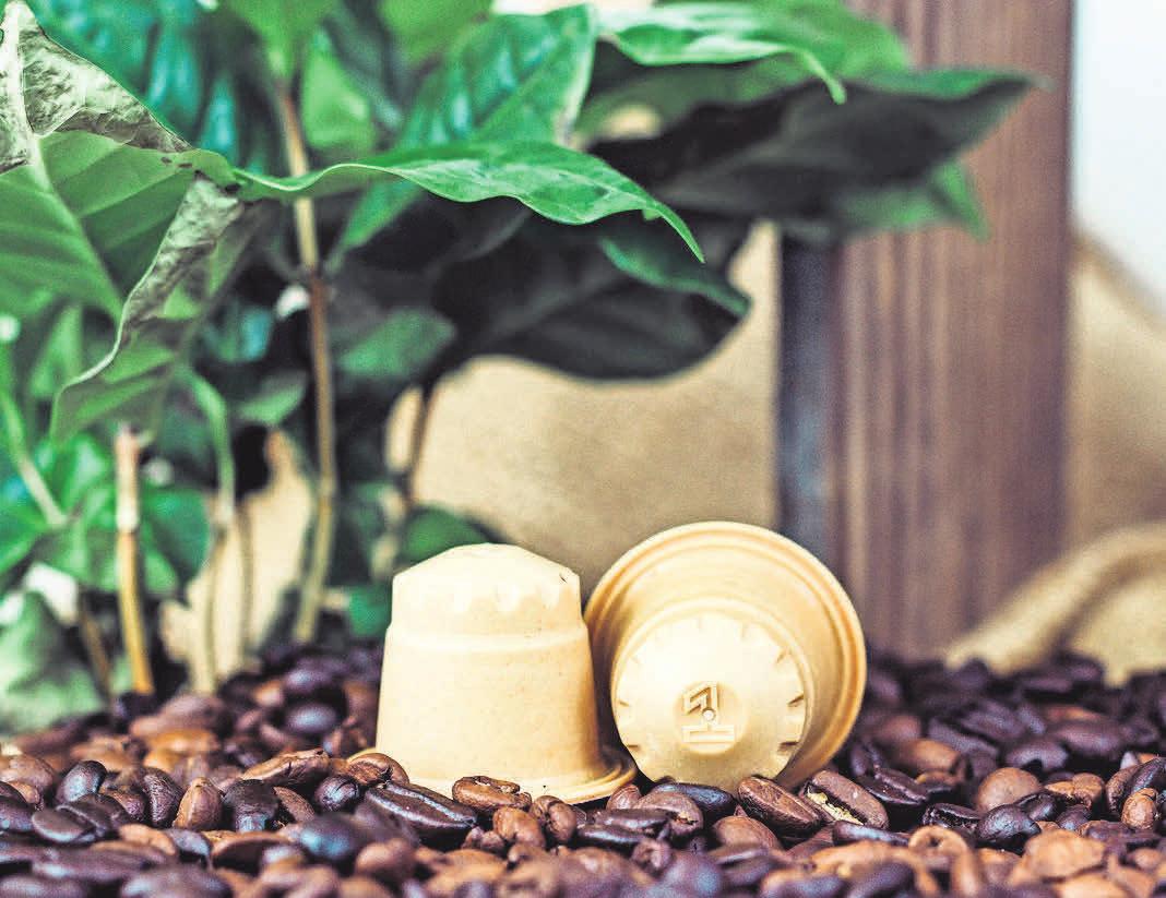 Beim Kaffee am Morgen kann man Holz- statt Alukapseln verwenden. Foto: djd/PEFC