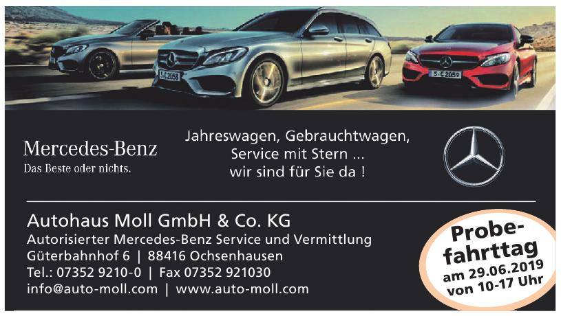 Autohaus Moll GmbH & Co. KG