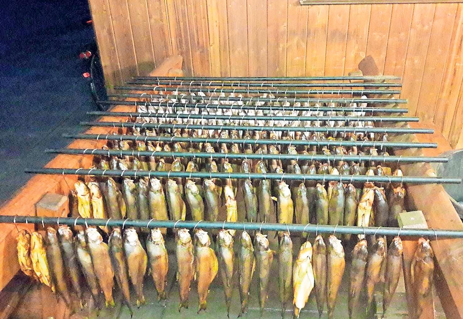 Am Vereinsgelände steht den Mitgliedern ein großer Räucherschrank zur Verfügung, in dem bis zu 150 Forellen Platz finden. Fotos: Dieter Jenß