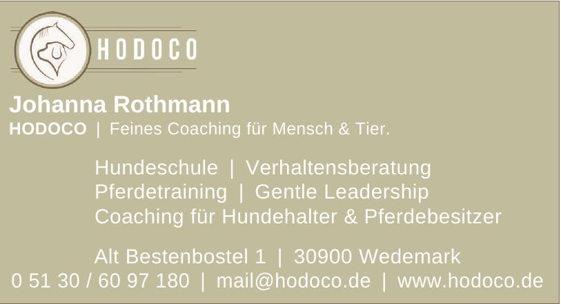 HODOCO Johanna Rothman