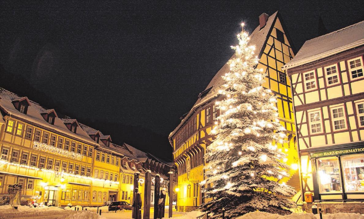 Wann Wurde Der Geschmückte Weihnachtsbaum Populär.Weihnachtsinfos Ulm Neu Ulm Geschmückter Weihnachtsbaum