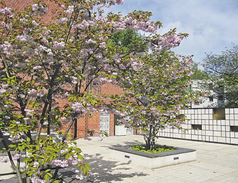 Blick in den Innenhof, der auch Paradiesgarten genannt wird.