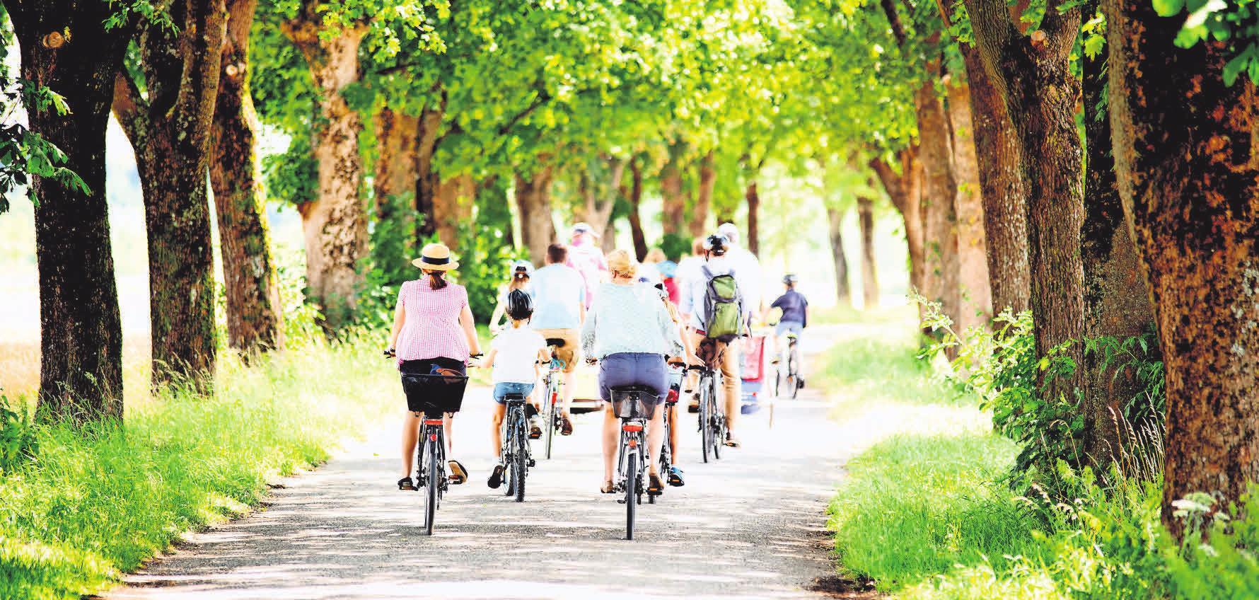 Radfahren in der Stecknitz-Region – ein entspanntes Vergnügen für die ganze Familie. Foto: Wellnhofer Designs - stock.adobe.com