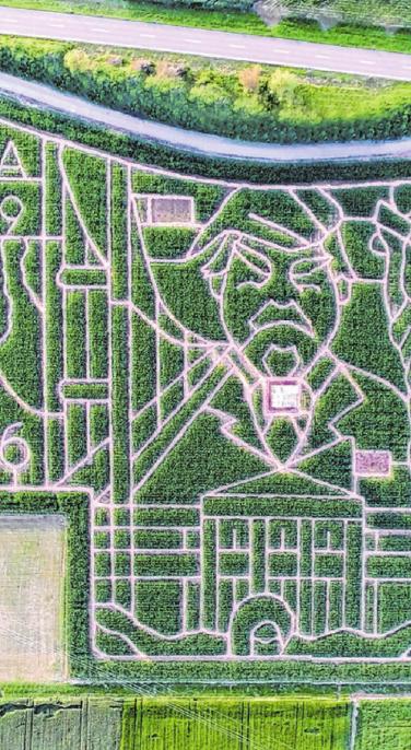 So ein Labyrinth ist ein Spaß für die ganze Familie.