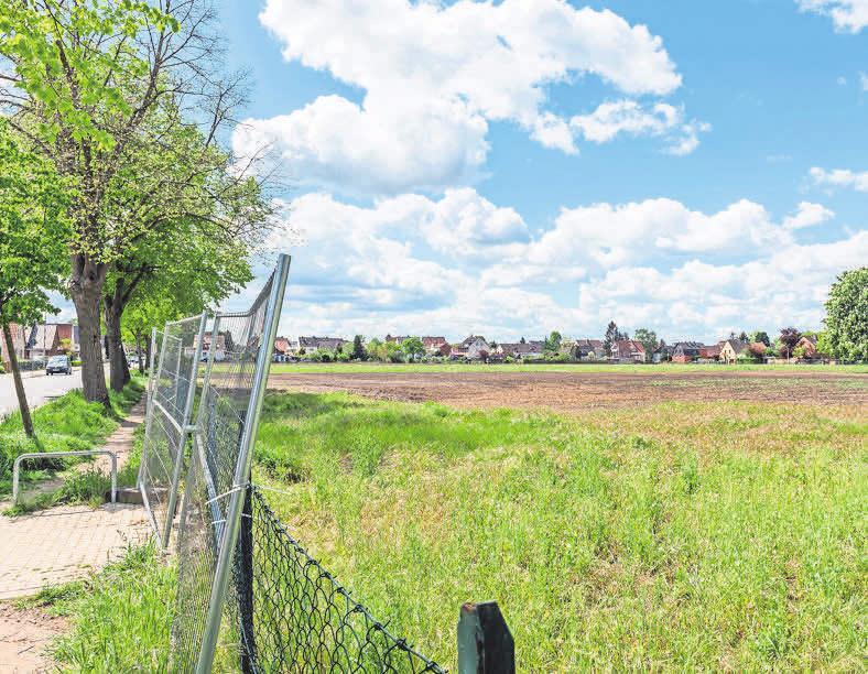 FAMILIENFREUNDLICH: Im Baugebiet Manskestraße entstehen bald 30 Einzel- und Doppelhäuser.