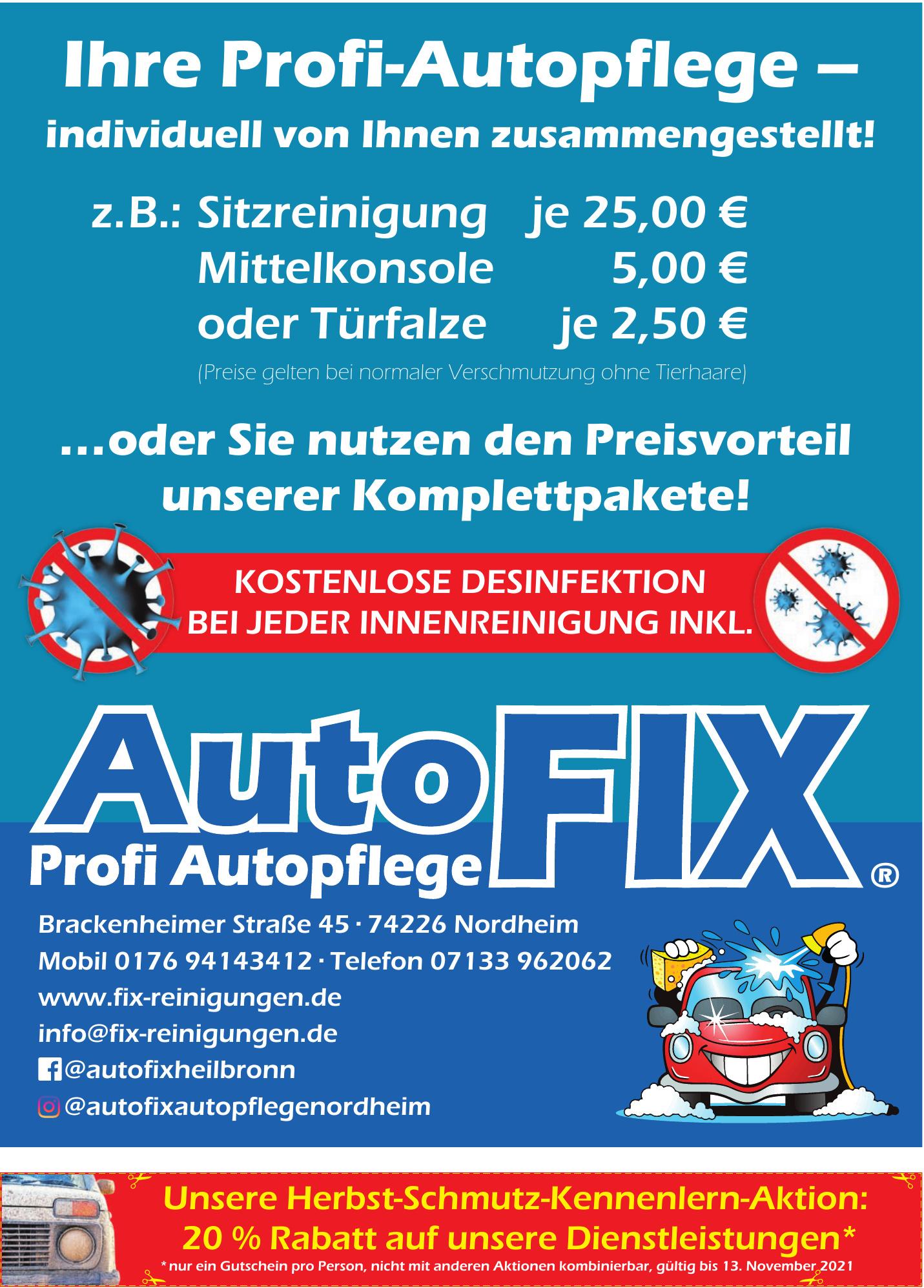 Autofix - Profi Autoplege