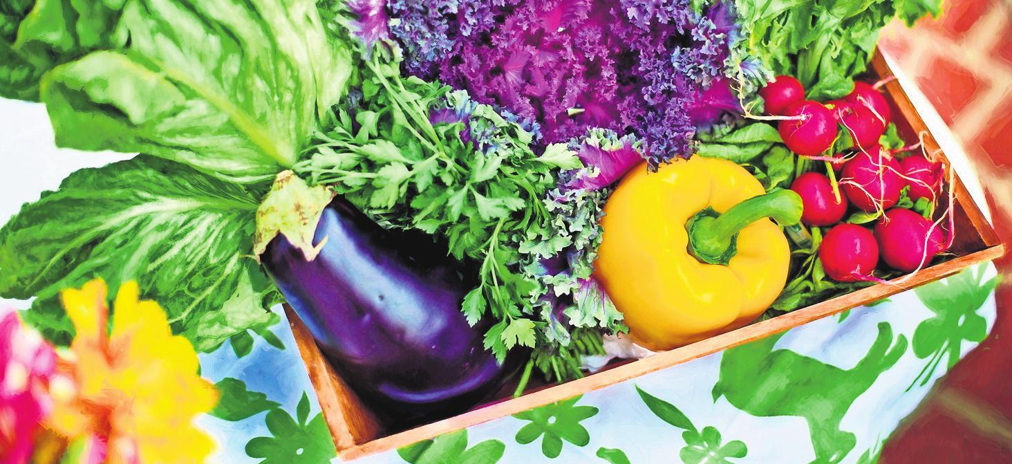 Eine ausgewogene Ernährung aus frischen regionalen Bioprodukten tut nicht nur dem Magen, sondern auch der Seele gut. Fotos: pixabay