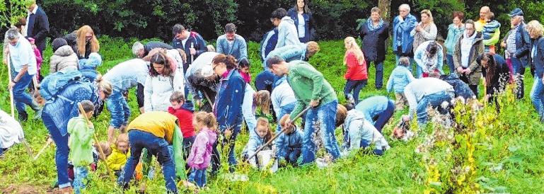 Immer wieder bot der OGV Aktionen an, bei denen auch die Kinder mitwirken konnten. Unser Bild zeigt die Gruppe beim Lesen der Kartoffeln im Jahr 2016. FOTO: JOSEF ZENKER