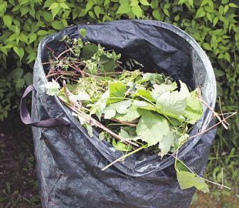 Grünschnitt kann man auf dem eigenen Komposthaufen entsorgen oder auf den Recyclinghof von Heinz Husen bringen. Foto:Fotolia/buhk