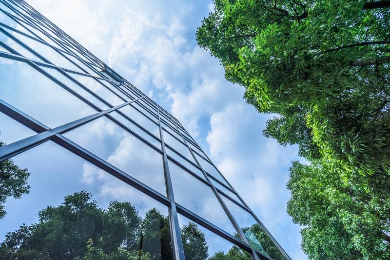 Natur in der Stadt. Foto: Shutterstock | hallojulie