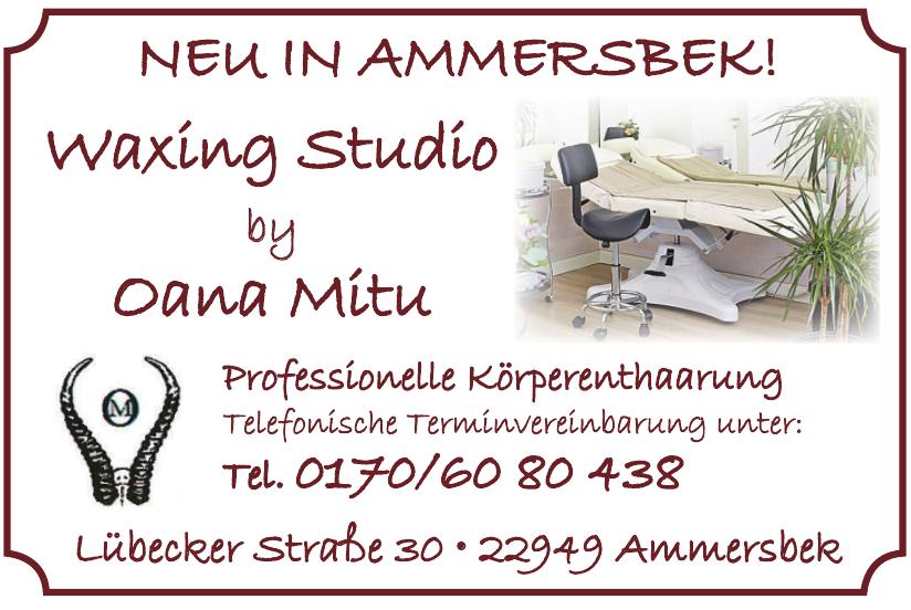 Waxing Studio by Oana Mitu