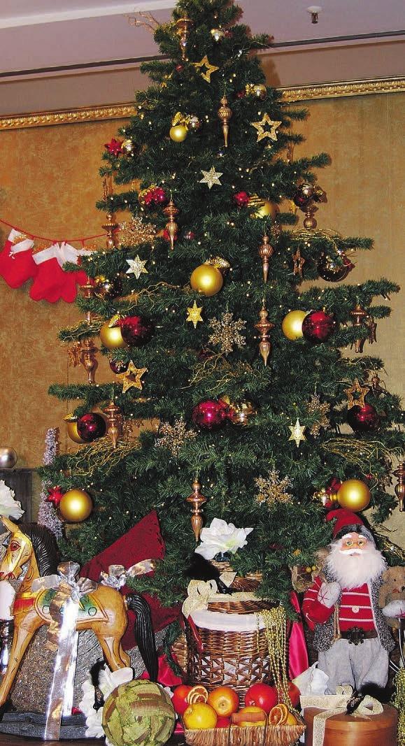 Ein geschmückter Tannenbaum gehört einfach dazu Fotos: hof