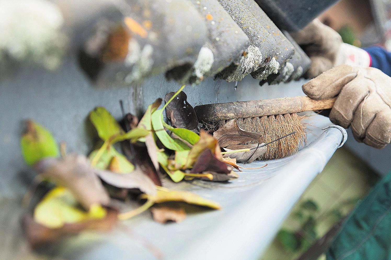 Damit das Wasser vom Dach nicht ins Haus dringt, sollten die Dachrinnen regelmäßig von Laub befreit werden. FOTO: DPA