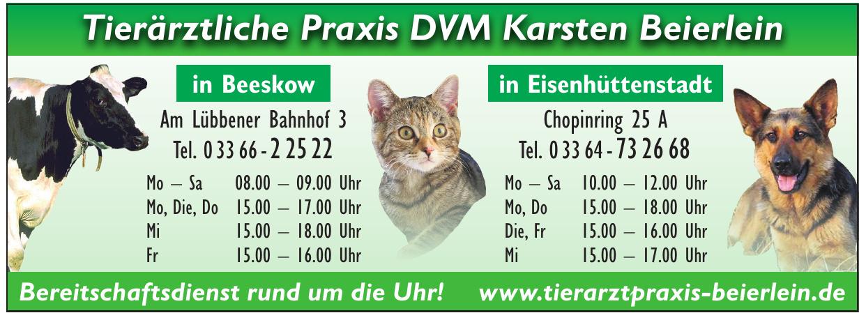 Tierärztliche Praxis DVM Karsten Beierlein
