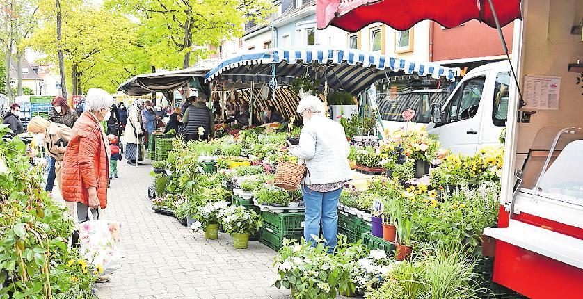 Blühendes Angebot: auf dem Wochenmarkt. FOTO: ENK